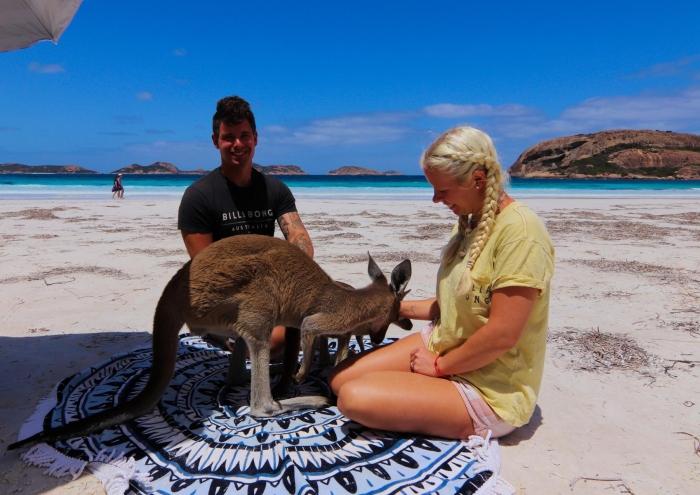 Weltreise Abenteuer Vanlife känguru